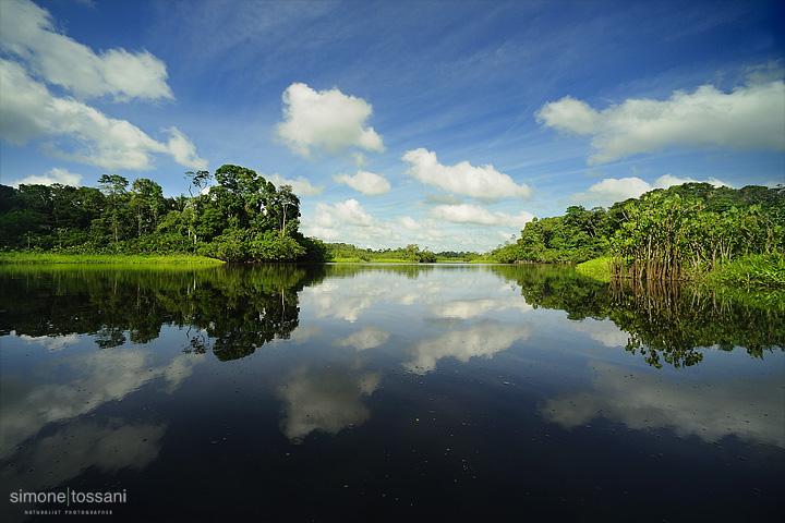 Laguna Amazzonia  Nikon D700  Nikon 14/24 f/2.8  1/1000 Sec  f/9  ISO 250 Fotografia Paesaggi materiale Nikon Simone Tossani