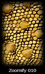 Zoomify Simone Tossani Macrofotografia Fotografia Naturalistica Risoluzione
